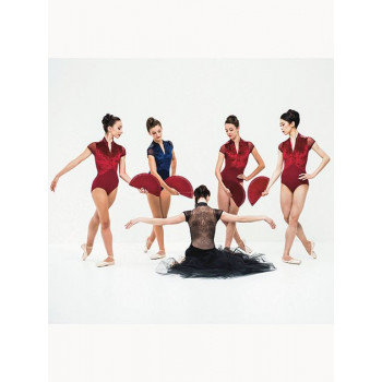Justaucorps Ballet Rosa Eve