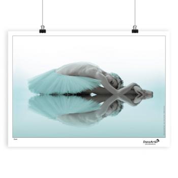Poster DanzArte swan
