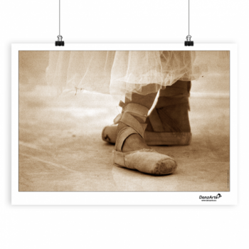 Poster DanzArte pointe shoes