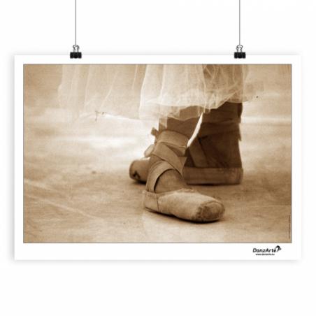 Poster DanzArte pointe shoes