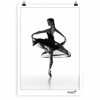 Poster DanzArte turning pointe