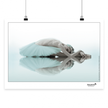 Affiche A3 DanzArte swan